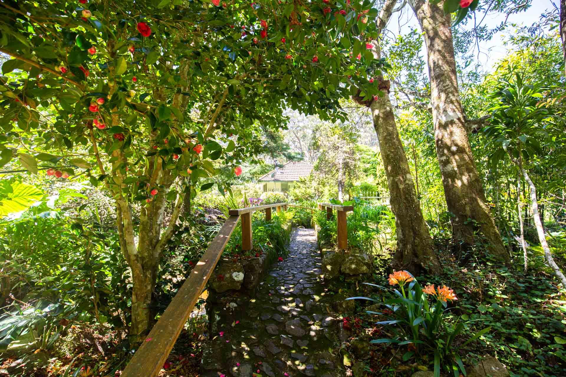 english-country-gardens-springbrook-national-park