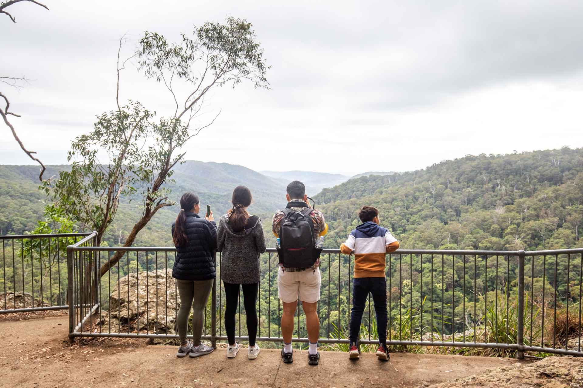 purling-brook-falls-springbrook-national-park-5