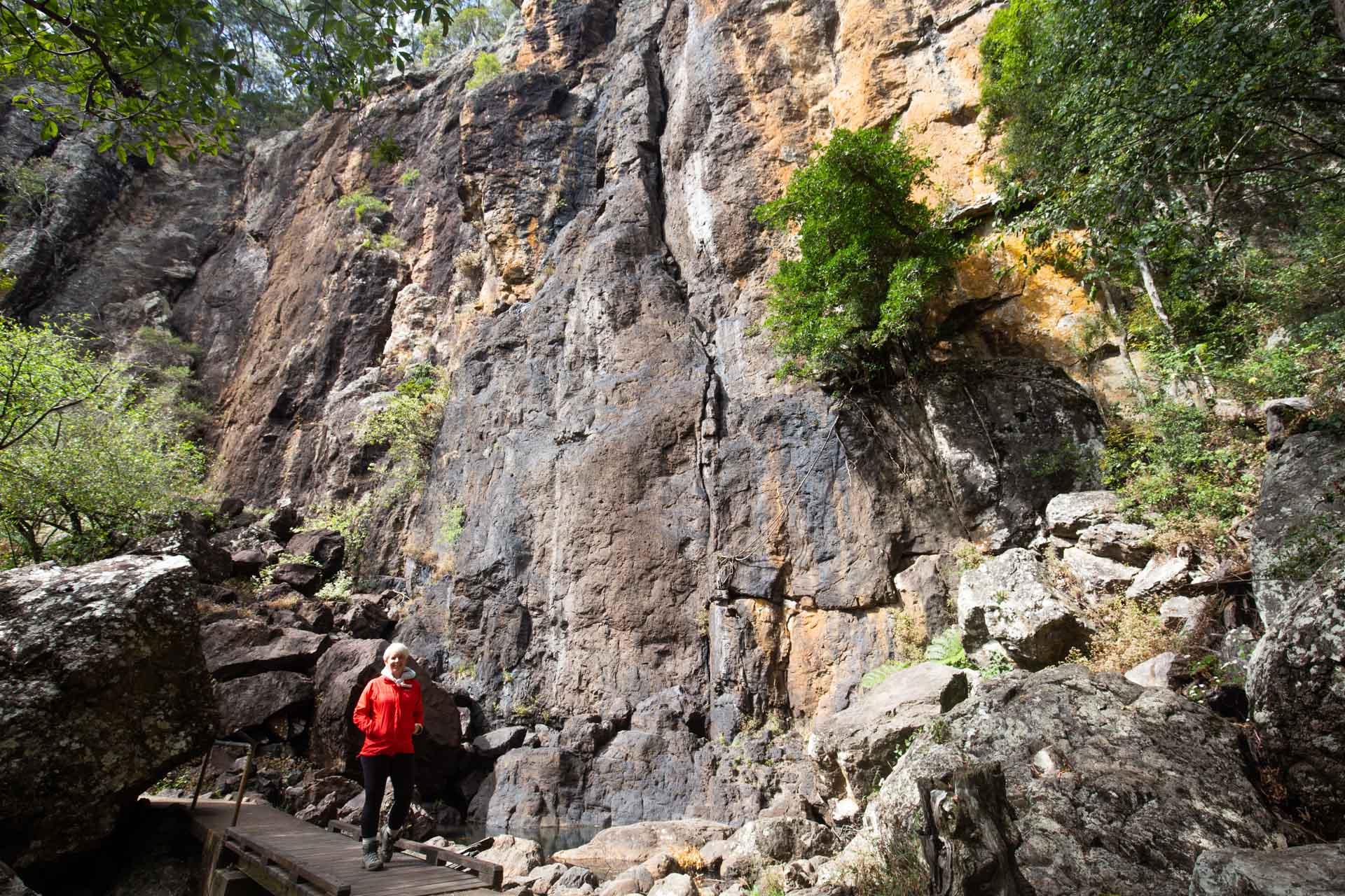 purling-brook-falls-springbrook-national-park-9