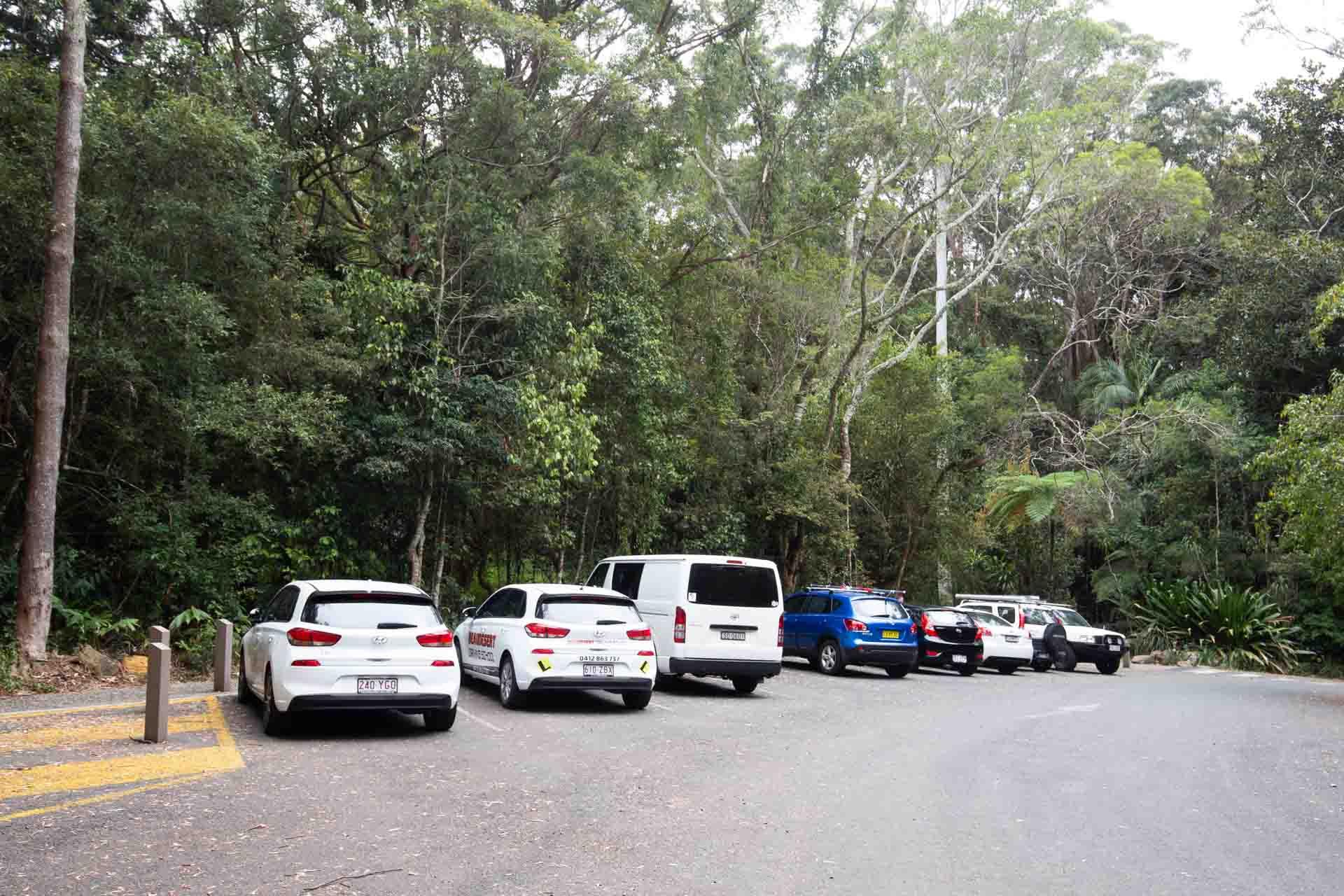 purling-brook-falls-springbrook-national-park