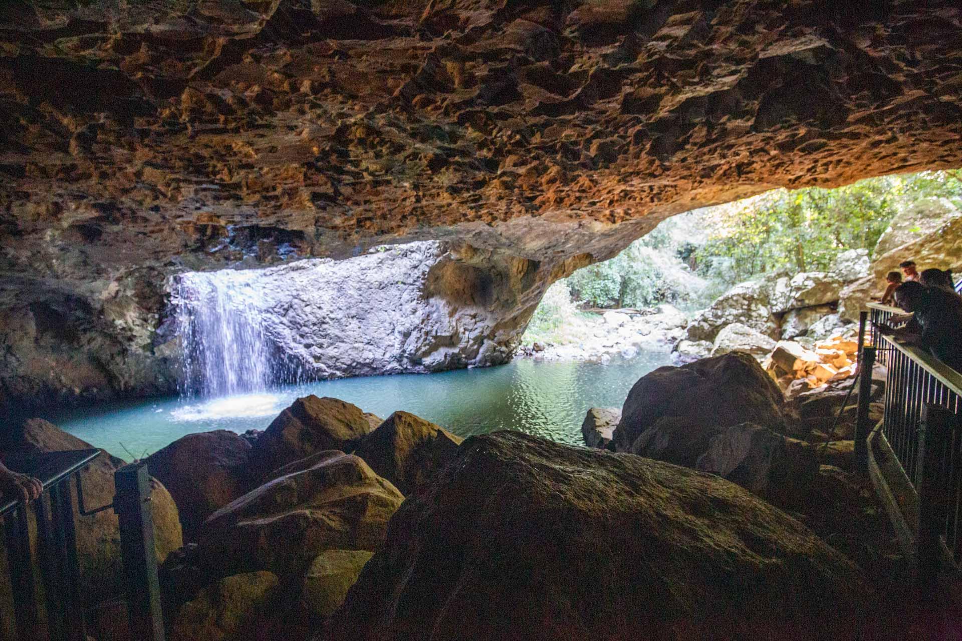 natural-bridge-springbrook-national-park