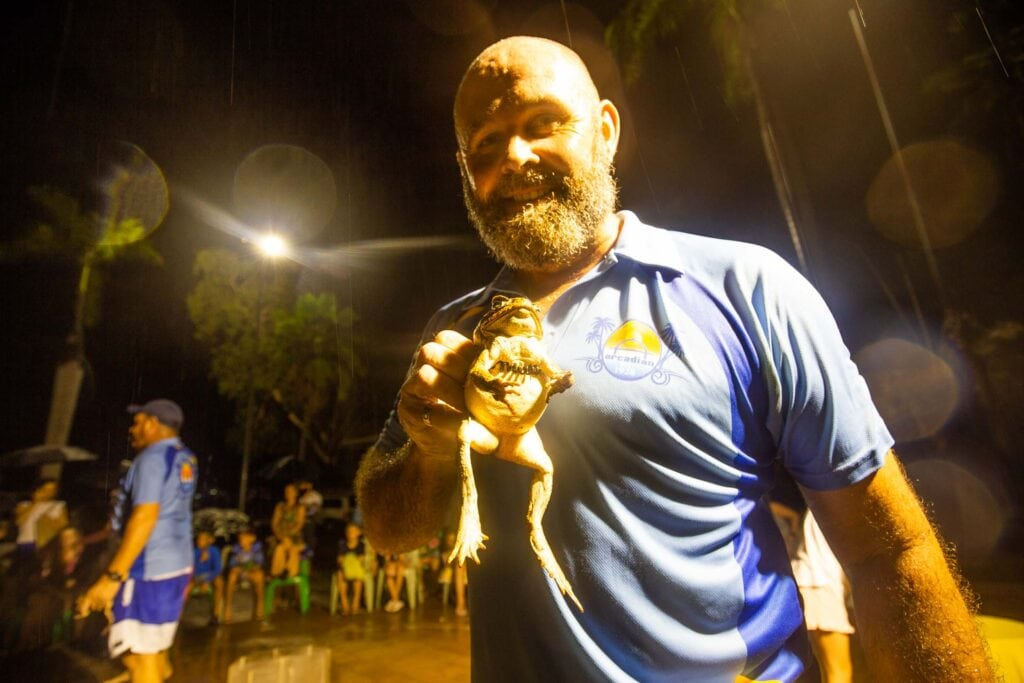 magnetic-island-cane-toad-racing